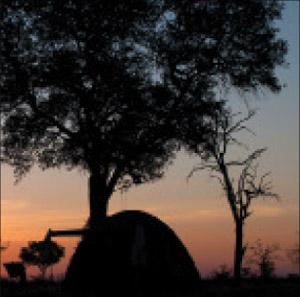 A camping safari