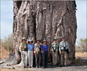 Upper Valley locals on safari with Dan pose in front of a Baobab Tree.
